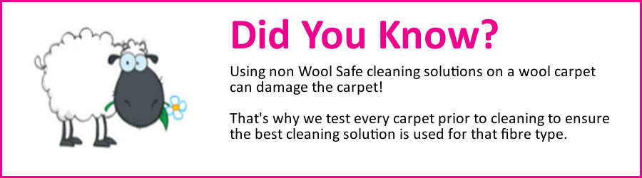 Picture showing wool carpet cleaning