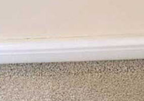 photo showing filtration mark on carpet
